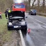 Orzełek: Pożar samochodu osobowego na DK25