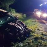 Więcbork-Mrocza: Samochód osobowy zderzył się z jeleniem