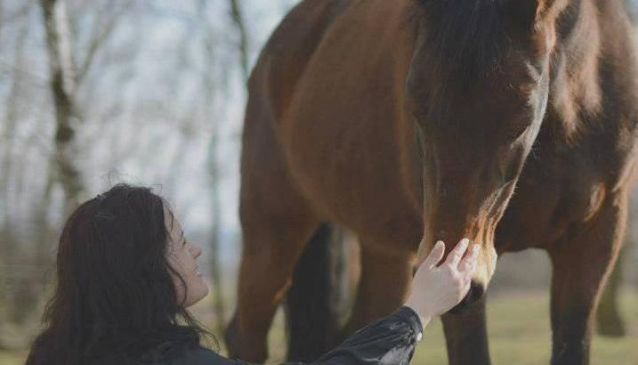konie natural