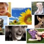 Optymizm i radość życia