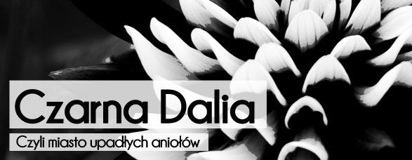Bombla_Podstawa_CzarnaDalia