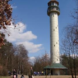 Góra Dziewicza z wieżą widokową