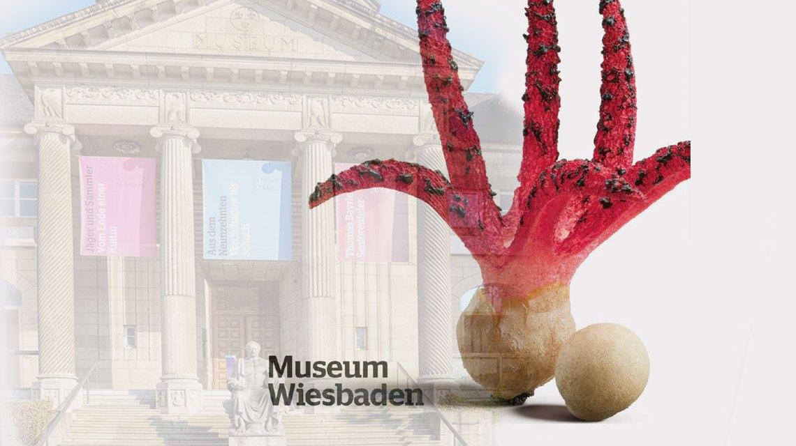 Die Ausstellung Pilze – Nahrung, Gift und Mythen im Museum Wiesbaden stellt über 1300 Pilze vor. Bild: Volker Watschounek / Museum Wiesbaden