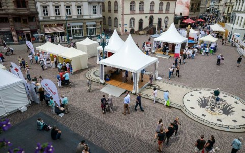 Die Hessischen gesundheitstage auf dem Schloßplatz, Blick auf die Aktionsfläche. ©2018 Volker Watschounek