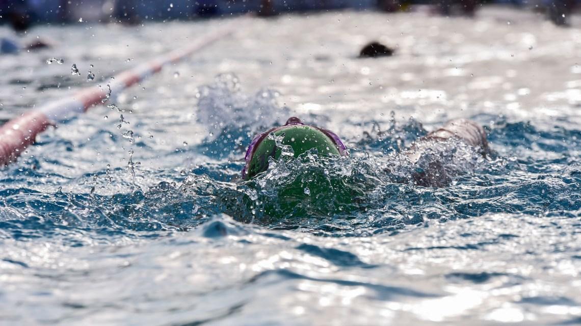 Meisterschwimmkurs: Von Welt-und Europameistern lernen