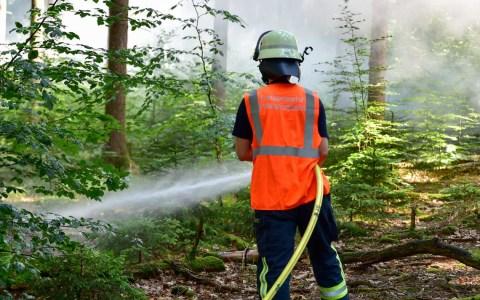 Brandübung im Wiesbadner Stadtwald. ©2019 Volker Watschounek