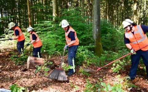 Böden, Bodenfeuchte in Deutschland im April ungewöhnlich gering. Waldbrandgefahr steigt