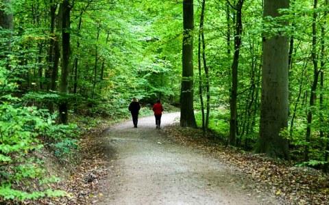 Spaziergang entlang des Kesselbachs
