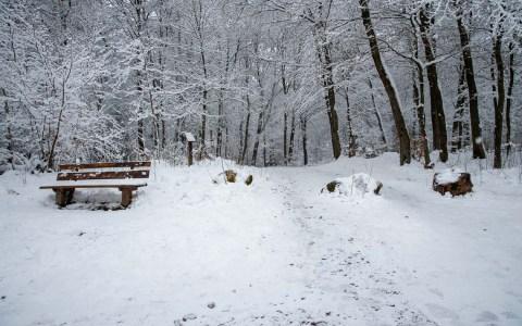Winterlandschaft Platte Wiesbaden