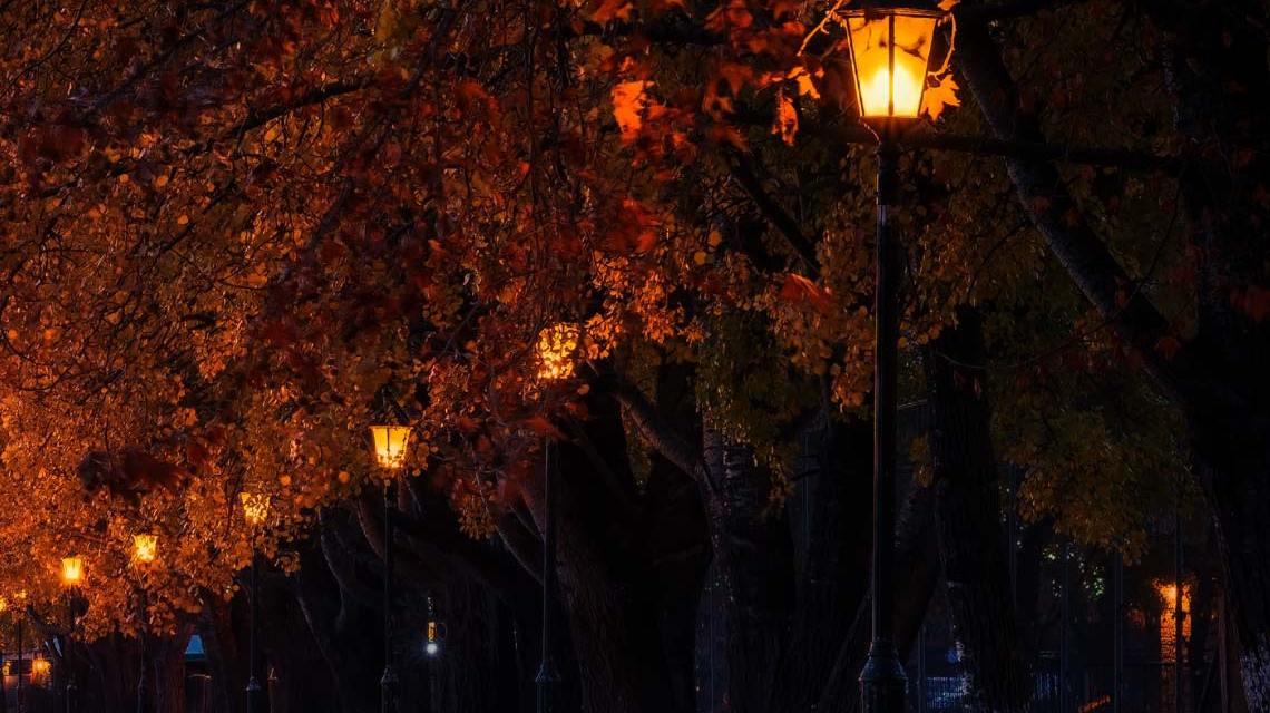 Licht im Park, Parkbekleuchtung, Radweg