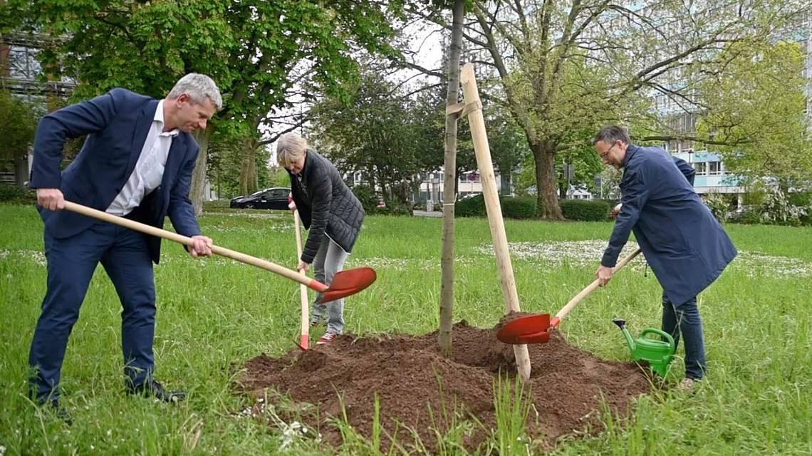 7.000 Eichen 2.0: Baumpflanzung anlässlich des 100. Geburtstags von Joseph Beuys