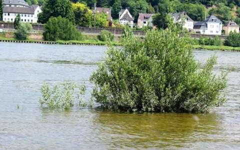 Hochwasser am Rhein, ein Teiuchen des Klimawandell
