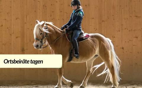 Reiten, Reithalle Aklt-Klarenthal ©2021 Symbolbild