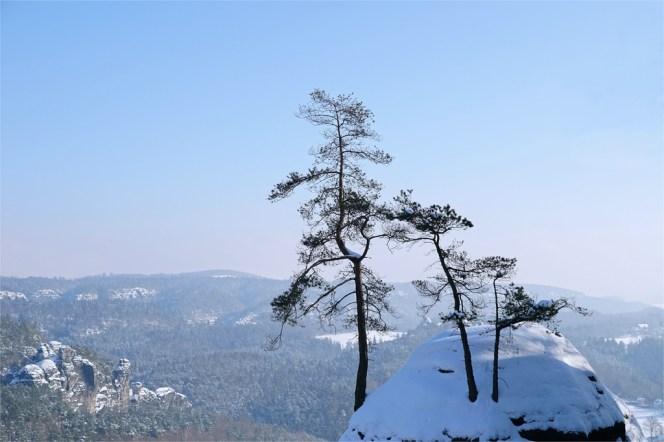 Elbsandsteingebirge - 2-