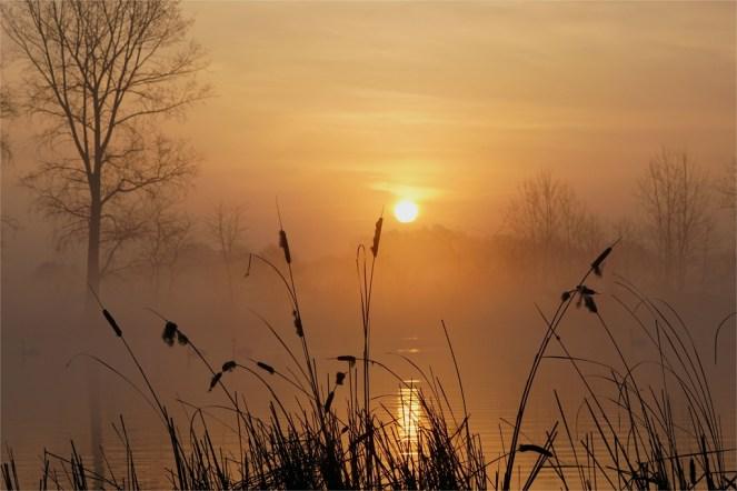 Wunderschöner Sonnenaufgang in Brandenburg