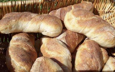 Dinkelbrötchen aus dem Holzbackofen selber gebacken
