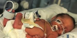 RJW-1 Week Old
