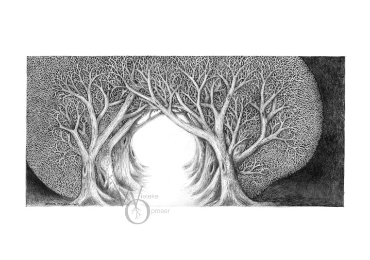 detailed black and white drawing of threes forming a passageway