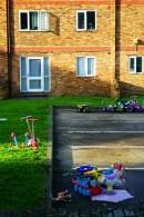 Yard Stories