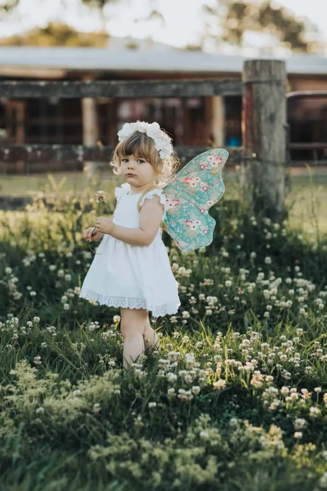 Wife-made Lacewing Butterfly Wings Pattern Add-on