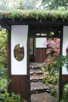 Japanese garden space