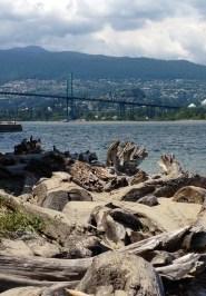 Lion Gate Bridge from Stanley Park, Vancouver