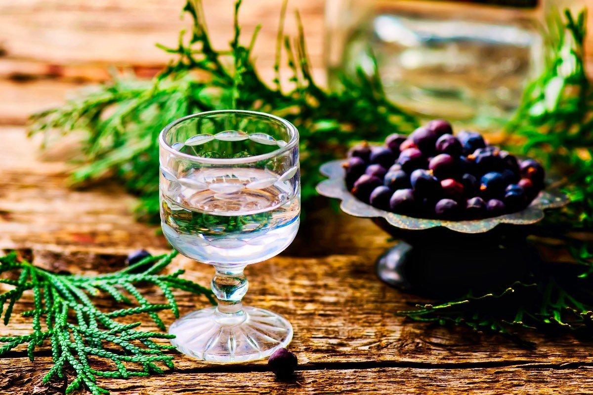Gin Tonic – Vom Medikament zum Trendgetränk