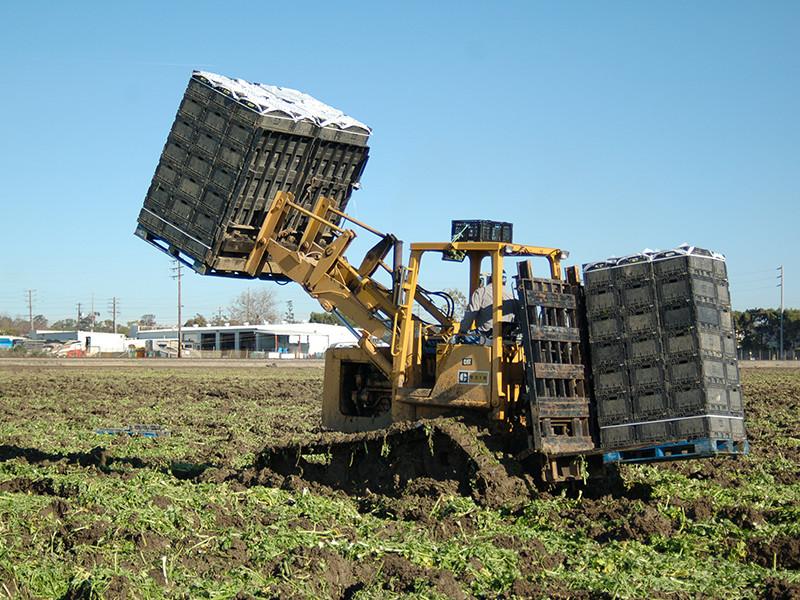 loader-raised