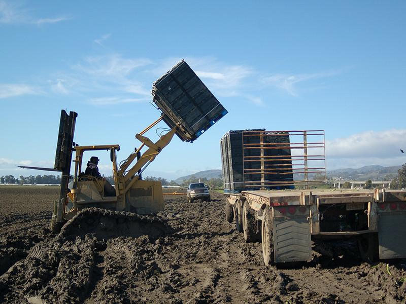 loader-truck