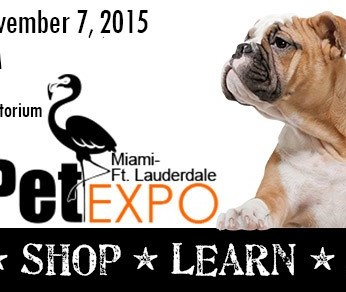 Wiggle Waggle Tails at Miami-Ft. Lauderdale Expo 2015