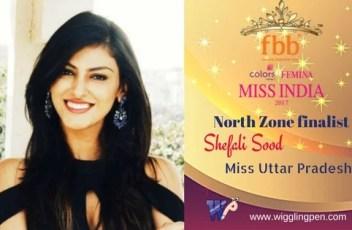 Miss Himachal Pradesh- 2017 (3)