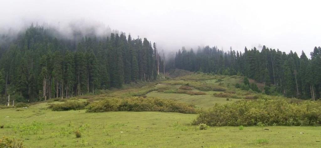Doodhpathri- The valley of milk