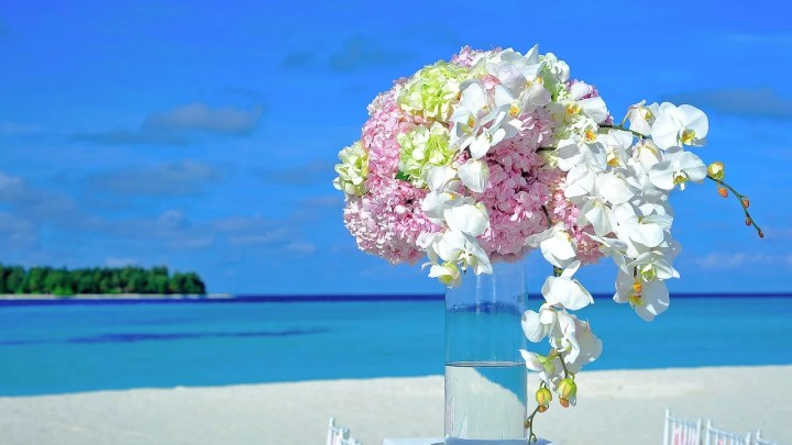 How to Have a Destination Wedding on a Super Tight Budget!