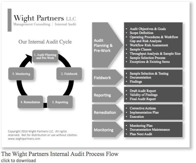 Internal Audit Partners