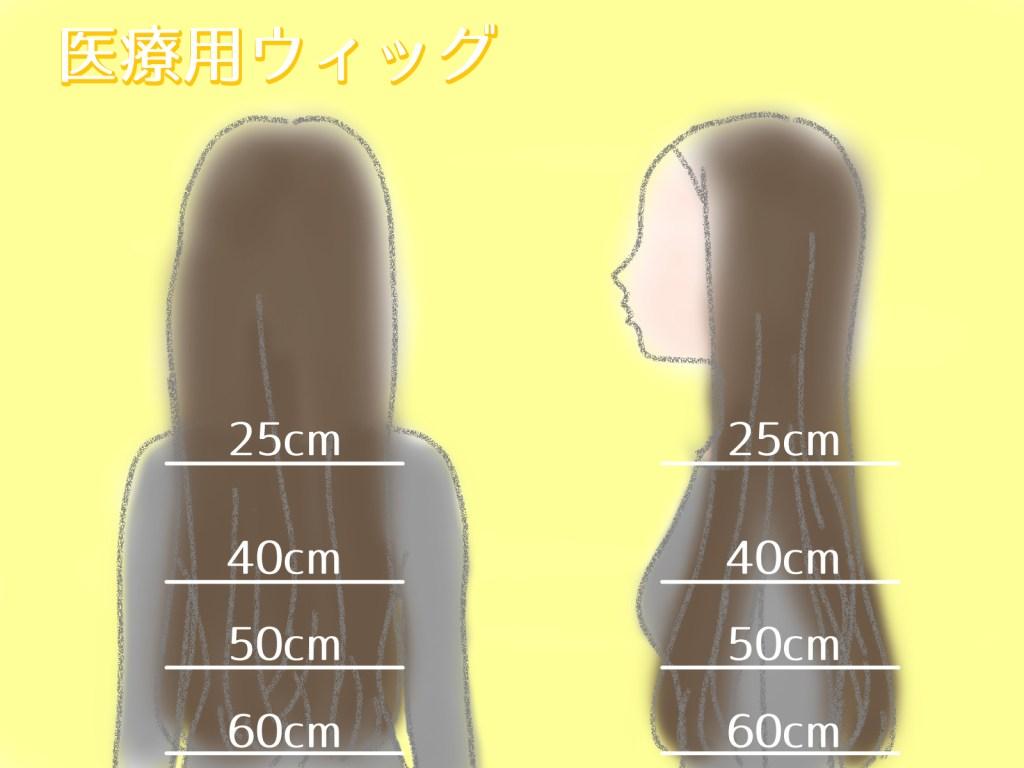髪の長さ医療用