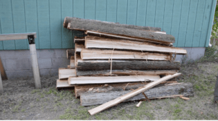 The finer work of splitting log sections into rough planks can be done in the forest or at home. Here Wayne and his crew have hauled quartered logs home to be processed into planks behind Wayne's garage/studio (Photo Credit: Thomas A. DuBois)