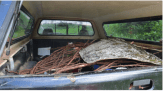 A supply of spruce roots and birch bark loaded onto the back of Wayne's truck to be taken home. Further preparation of the roots will take place at home (Photo Credit: Thomas A. DuBois)