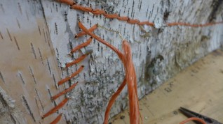 Close up of the stitching and the wire needle. (Photo credit - Colin Connors)