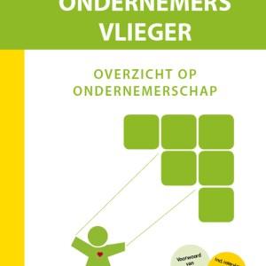 Ondernemers Vlieger - Owen de Vries - Hardcover (9789492926975)