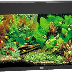Juwel Rio 125 aquarium (Kleur: zwart)