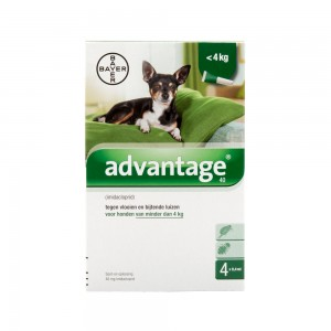 Advantage 40 hond