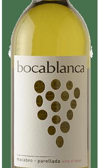 Boca Blanca Image