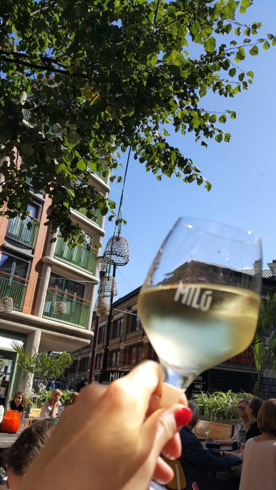 Leukste terrassen in Den Haag: borrelen bij Milu Den Haag