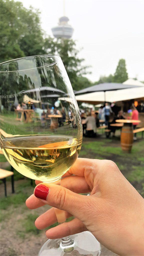 Rypp wijnfestival in Rotterdam