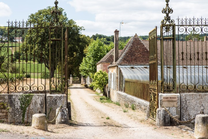 Domaine Cary Potet in Montagny