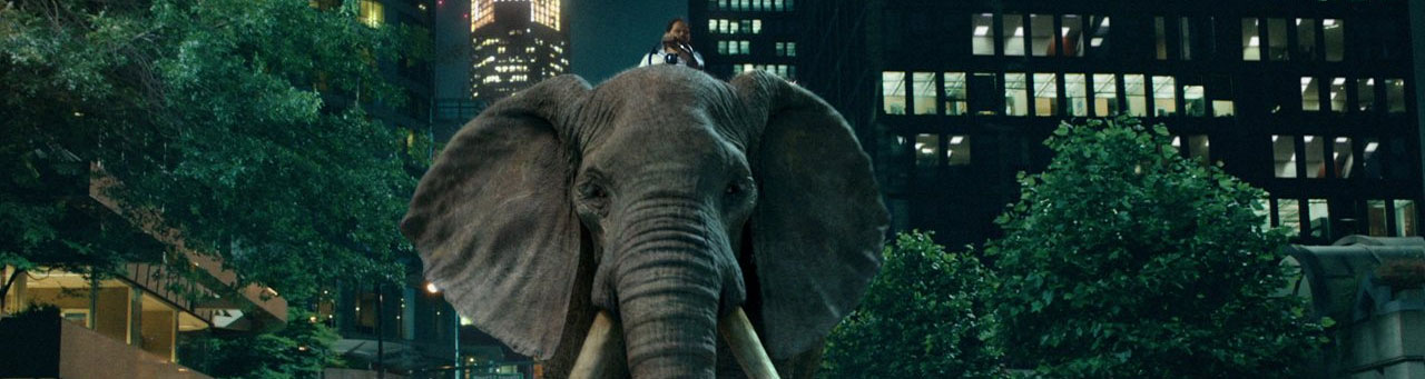"moneysupermarket1 Money Supermarket - ""Elephunk"""