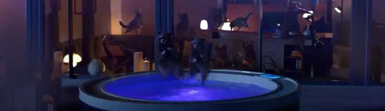 "racoon Schneider Electric - ""Raccoon Dance Party"""