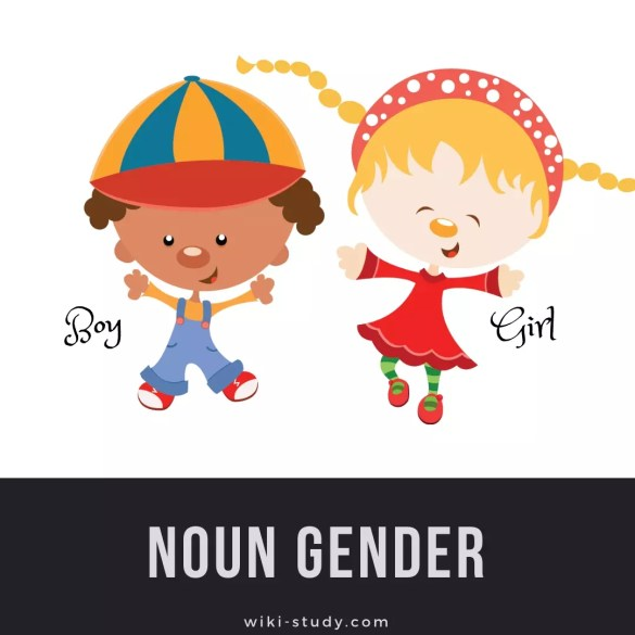Noun Gender - TOEFL Vocab & Grammar