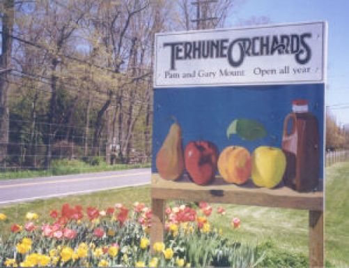 Image result for terhune orchards