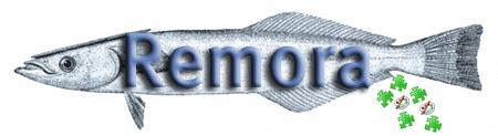 Remora, aka the suckerfish